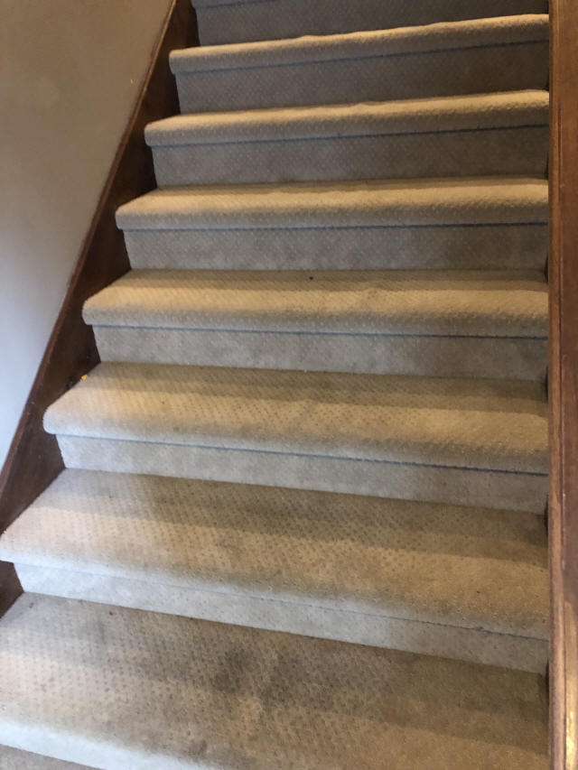 Carpeted Stairs Before Remodel
